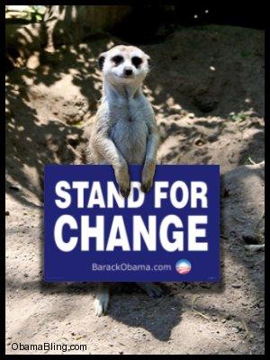 Meerkat_standing_for_change